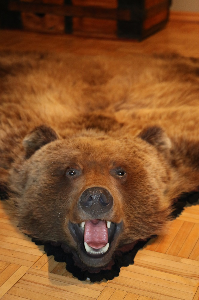 animal plush lodge modern southwest faux rugs area stuffed skin rug bear black